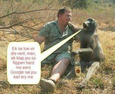 Google sal nie help nie. Cute Quotes, Funny Quotes, Afrikaans Quotes, Good Morning Messages, My Land, Wise Words, Laughter, Poems, Funny Pictures