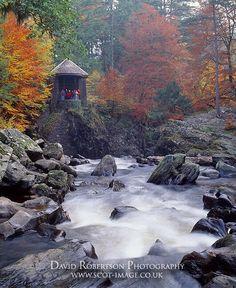Hermitage-River-Braan-Perthshire-Scotland-SBP-754.jpg (531×650)