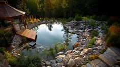 Swimming Pool Pond, Natural Swimming Ponds, Natural Pond, Swimming Pool Designs, Pool Water, Water Garden, Moon Garden, Garden Pond, Herb Garden