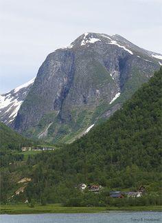 Photo Mount Rainier, My Photos, Mountains, Nature, Travel, Naturaleza, Trips, Traveling, Nature Illustration