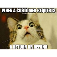 You know, everyday we collect awesome and funny pictures for you and your laughing.As well as, Today we collect some Monday memes cat that are so funny and humor.Keep enjoy and also share with your friends. Funny Cat Memes, Memes Humor, Funny Cats, Funny Animals, Cute Animals, Hilarious, Jokes, Car Memes, Funny Quotes
