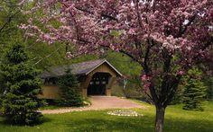 Naturaleza puentes jardín de primavera Wisconsin fondos de escritorio 1920x1080