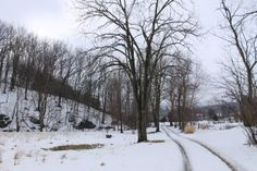 Afton, VA, in the snow Winter Road, Roads, Virginia, The Outsiders, Outdoors, Snow, Adventure, Landscape, Scenery