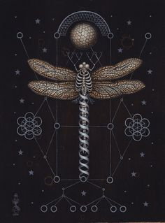 Scientific Illustration | foto-jennic: The Soul of Science