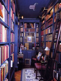 Dark blue bookshelves, brass library lighting