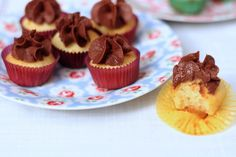 Cupcakes choco noisette