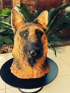 """This was made for my big brother who owns 6 german shepherds as a surprise for his birthday. The cake itself is made from an 8"""" choc mud and 2 × 6″ vanilla cake filled and covered in white choc ganache. There was over 2 kg of fondant used and 3..."""