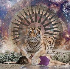 Spirit animals drawing - tiger spirit animal by lori menna Soul Collage, Collage Art, Tiger Spirit Animal, Spiritual Animal, Animal Spirit Guides, Power Animal, Pet Tiger, Mystique, Animal Totems