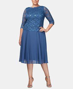 3af70c66d5caa Alex Evenings Plus Size Sequined Lace A-Line Dress