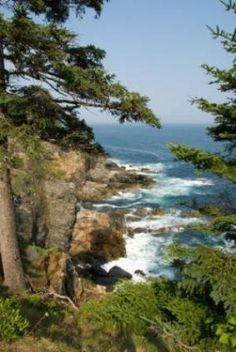Acadia National Park in Maine by janine