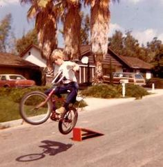 That kid everyone on your block wanted to punch, but their mom had the good popsicles... Read more here:  http://aubreys642.wordpress.com/