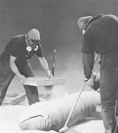 Sandworms - Dune - Behind The Scenes Movie Props, Film Movie, Dune Frank Herbert, Dune Art, Perry Rhodan, Sci Fi Horror Movies, Sci Fi Models, Real Model, Adventure Movies