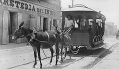 """This mule car was photographed in Matamoros, Tamaulipas, Mexico around 1910.""    Courtesy: The Cable Car Home Page, by Joe Thompson (USA)."