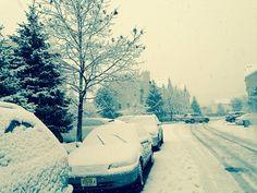 véhicules sous la neige #voiture #automobile #givre #hiver #froid #polaire #glace #glaciale #winter #ice #quartierdesjantes Quartierdesjantes.COM
