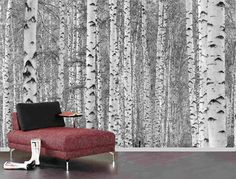 Birch tree forest mural, Pre pasted Washable and dry strippable wall paper, wall covering on Etsy, $355.00