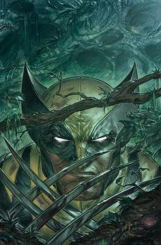 Wolverine de Boo Cook