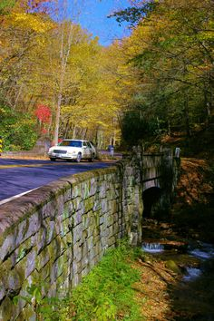 Favorite Fall Scenic Drive: Forest Heritage Scenic Byway in Pisgah National Forest in North Carolina