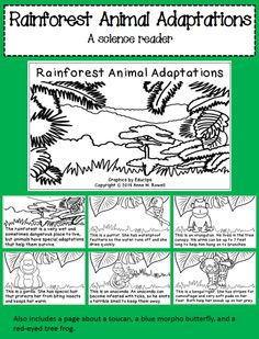 A science reader to teach about adaptations in rainforest animals. The last page is interactive so students can write/illustrate their own page.