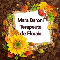 Confiram as dicas dos Florais do mês de janeiro/fevereiro