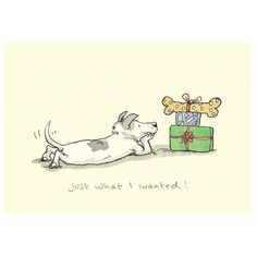 Christmas card from the series Two Bad Mice folding card without impression with . - Christmas card from the series Two Bad Mice folding card without impression with envelope - Anita Jeram, Dog Illustration, Christmas Dog, Cat Gifts, Dog Art, Cute Drawings, Dog Love, Cute Dogs, Cute Animals