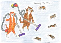 I wonder if Vets could really devise a cat therapy course like this?