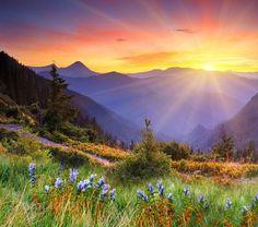 горы рассвет - Поиск в Google