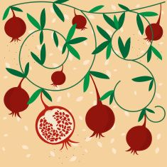 Best Pomegranate Illustrations, Royalty-Free Vector Graphics… – Graffiti World Night Illustration, Fruit Illustration, Pattern Illustration, Pomegranate Art, Wreath Drawing, Paper Drawing, Vector Art, Tatoo, Embroidery