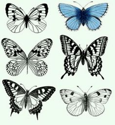 Butterfly printables from graphicsfairy.com More