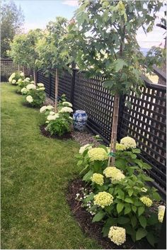 Courtyard Landscaping, Small Yard Landscaping, Landscaping Tips, Acreage Landscaping, Mailbox Landscaping, Succulent Landscaping, Country Landscaping, Landscaping Borders, Shade Landscaping