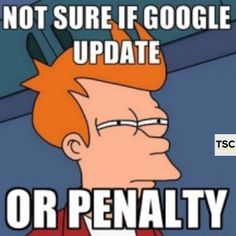 Not sure if Google update,