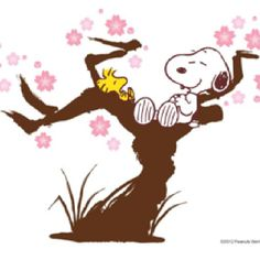 Even Snoopy and Woodstock enjoy cherry blossom trees!