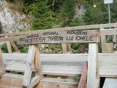 plecat de acasă: Peștera Poarta lui Ionel(e)- Munții Apuseni