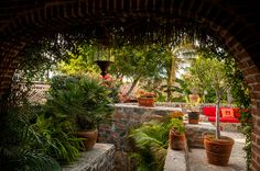 Todos Santos inn courtyard by Sam Scholes
