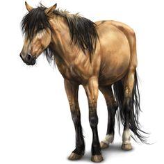 Динго, Pferd Niederländisches Warmblut Cremello #36810 - Howrse