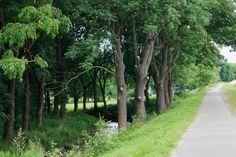 Radtouren durch Thüringen – Reportagen Unstrut-Radweg von der Quelle bis zur Gera-Mündung http://frank-c-mey.com/unstrut-radweg-30-06-2016-quelle-bis-geramuendung  Eine Übersicht über alle Reportagen aus Erfurt und Thüringen finden Sie hier http://frank-c-mey.com/category/erfurt-impressionen  Meine Bücher bei Amazon über meine Autorenseite http://www.amazon.de/-/e/B00N77UUJE  #Autorenblog Frank C. Mey #Buchautor #Erfurt #Thüringen #Reportagen #Buchtipps #Filmtipps