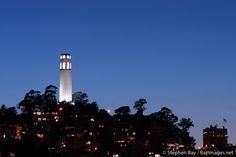 Coit Tower at night, San Francisco, California. San Francisco California, Dream Life, Bay Area, Seattle Skyline, View Photos, Places Ive Been, Stuff To Do, Cities, Tower