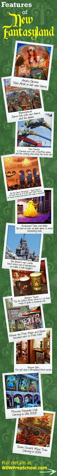 Features of New Fantasyland (+ some tips) | disney world | magic kingdom
