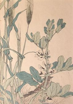 Ukiyo-e, Lerche, Gerste und Saubohnen