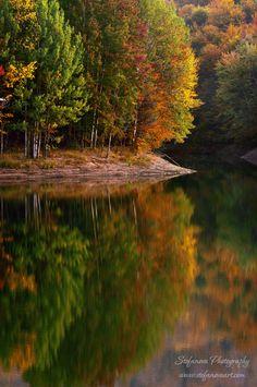 Autumn colors; photo by Mariana Stefanova
