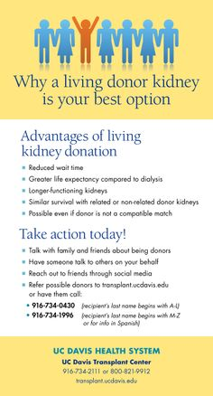 Living kidney donation is the best option for those in need of kidney transplants. Here is a handy tip sheet with more information and guidance for finding donors.