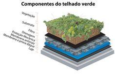 Telhado verde - Dicas para a construção e manutenção de ecotelhados. Conheça as vantagens e os ônus do sistema construtivo.CONFIRA AQUI!