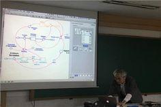 이화여자대학교, '이화-복잡계 모델링과 중등교육과정' 쇼케이스 진행