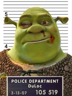 Shrek Mug Shot T-Shirt. Available in all colours & Sizes. £8.99 + FREE delivery to UK www.fairyjamfactory.com