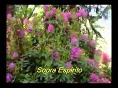 Inclusão Musical Gospel Católico e Evangelico : Sopra espírito trazendo vida. Restaura as feridas,...