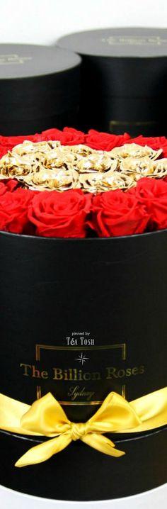 layla rose celeste star