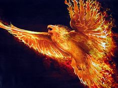Kind of obsessed with phoenixes (how do you make that plural, phoenices? LOL)
