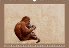 Wunderbare Tierwelt - CALVENDO