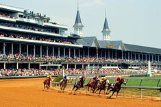 My humble abode is located about 20 minutes from Louisville, KY, so we are going to Churchill Downs! I have not stepped foot over there in ages, so I am quite thrilled!