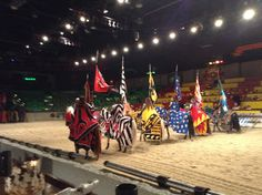 Medieval Times Dinner Theatre