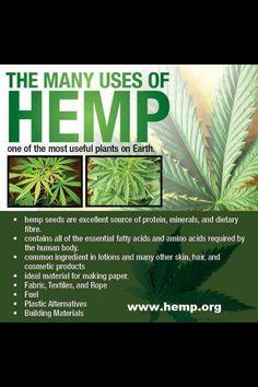 Hemp the many uses